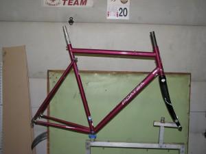 Zia frame