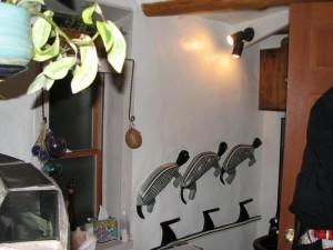 Bathroom Turtles